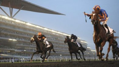 Photo of Dubai World Cup prize fund raised to US$35million
