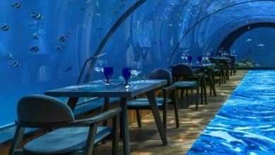 Photo of Maldives' All-Glass Undersea Restaurant And Yoga Venue