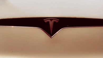 Photo of Elon Musk says the Tesla Model Y will be unveiled on March 14