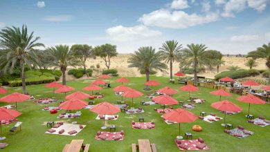 Photo of Picnic at Bab Al Shams – What a great idea for an afternoon out!